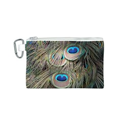 Colorful Peacock Feathers Background Canvas Cosmetic Bag (S)