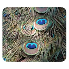 Colorful Peacock Feathers Background Double Sided Flano Blanket (Small)