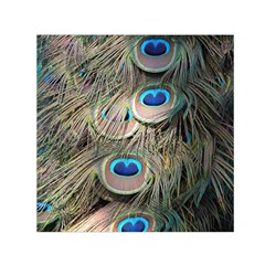 Colorful Peacock Feathers Background Small Satin Scarf (Square)