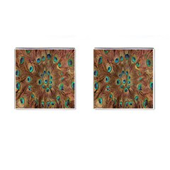 Peacock Pattern Background Cufflinks (Square)