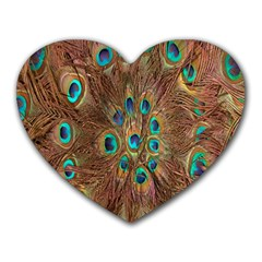 Peacock Pattern Background Heart Mousepads
