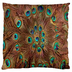 Peacock Pattern Background Large Cushion Case (Two Sides)