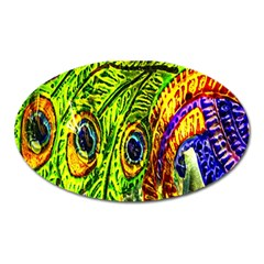 Glass Tile Peacock Feathers Oval Magnet