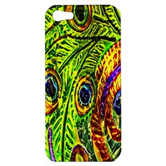 Glass Tile Peacock Feathers Apple iPhone 5 Hardshell Case