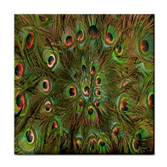 Peacock Feathers Green Background Tile Coasters