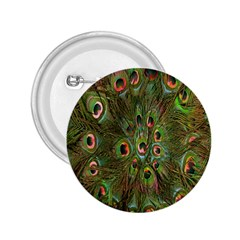 Peacock Feathers Green Background 2.25  Buttons