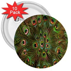 Peacock Feathers Green Background 3  Buttons (10 Pack)