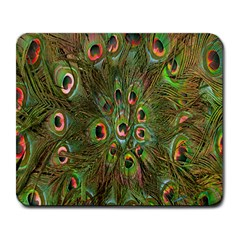 Peacock Feathers Green Background Large Mousepads