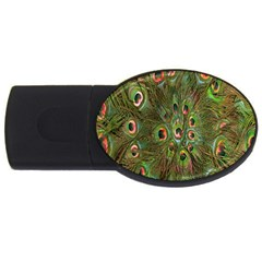 Peacock Feathers Green Background USB Flash Drive Oval (2 GB)
