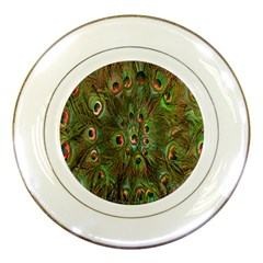 Peacock Feathers Green Background Porcelain Plates