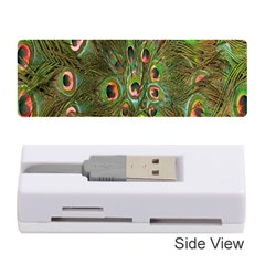 Peacock Feathers Green Background Memory Card Reader (stick)