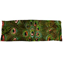 Peacock Feathers Green Background Body Pillow Case (Dakimakura)