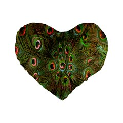 Peacock Feathers Green Background Standard 16  Premium Heart Shape Cushions