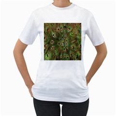 Peacock Feathers Green Background Women s T-Shirt (White)