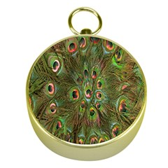 Peacock Feathers Green Background Gold Compasses