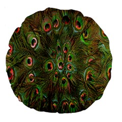 Peacock Feathers Green Background Large 18  Premium Flano Round Cushions