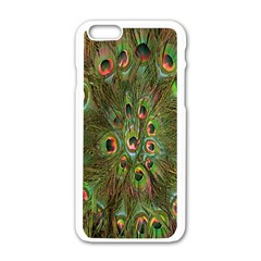 Peacock Feathers Green Background Apple iPhone 6/6S White Enamel Case