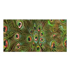 Peacock Feathers Green Background Satin Shawl