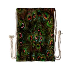 Peacock Feathers Green Background Drawstring Bag (small)