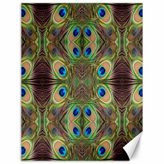 Beautiful Peacock Feathers Seamless Abstract Wallpaper Background Canvas 12  X 16