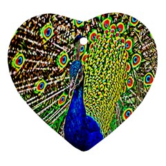 Graphic Painting Of A Peacock Ornament (Heart)