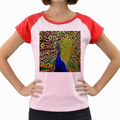 Graphic Painting Of A Peacock Women s Cap Sleeve T Shirt