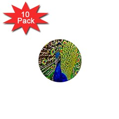 Graphic Painting Of A Peacock 1  Mini Magnet (10 Pack)