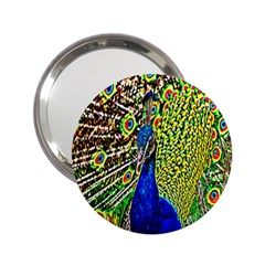 Graphic Painting Of A Peacock 2.25  Handbag Mirrors
