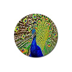 Graphic Painting Of A Peacock Magnet 3  (round)