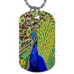 Graphic Painting Of A Peacock Dog Tag (one Side)