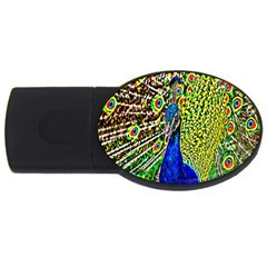Graphic Painting Of A Peacock USB Flash Drive Oval (2 GB)