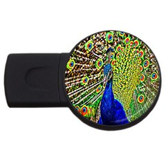Graphic Painting Of A Peacock Usb Flash Drive Round (4 Gb)