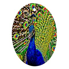Graphic Painting Of A Peacock Oval Ornament (Two Sides)