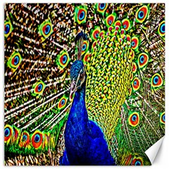 Graphic Painting Of A Peacock Canvas 16  x 16
