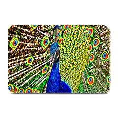 Graphic Painting Of A Peacock Plate Mats