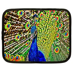 Graphic Painting Of A Peacock Netbook Case (xl)