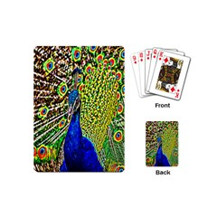 Graphic Painting Of A Peacock Playing Cards (Mini)