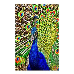 Graphic Painting Of A Peacock Shower Curtain 48  X 72  (small)