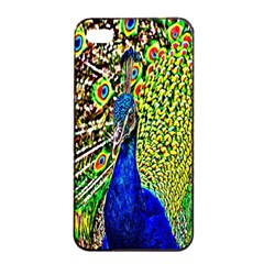 Graphic Painting Of A Peacock Apple iPhone 4/4s Seamless Case (Black)