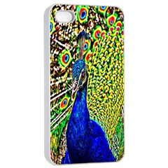Graphic Painting Of A Peacock Apple iPhone 4/4s Seamless Case (White)