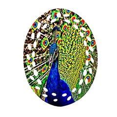 Graphic Painting Of A Peacock Oval Filigree Ornament (Two Sides)