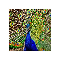 Graphic Painting Of A Peacock Acrylic Tangram Puzzle (4  X 4 )
