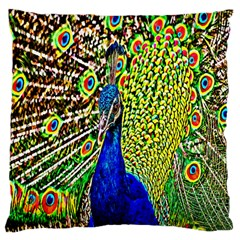 Graphic Painting Of A Peacock Large Cushion Case (One Side)