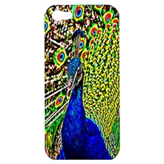 Graphic Painting Of A Peacock Apple iPhone 5 Hardshell Case
