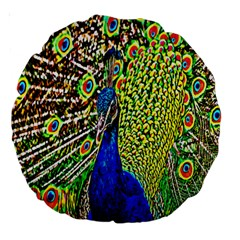 Graphic Painting Of A Peacock Large 18  Premium Round Cushions