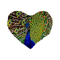 Graphic Painting Of A Peacock Standard 16  Premium Heart Shape Cushions