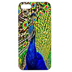 Graphic Painting Of A Peacock Apple iPhone 5 Hardshell Case with Stand