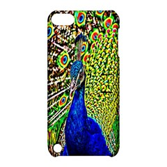 Graphic Painting Of A Peacock Apple iPod Touch 5 Hardshell Case with Stand
