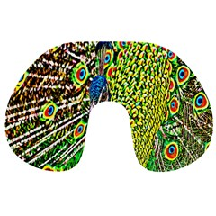 Graphic Painting Of A Peacock Travel Neck Pillows