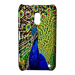 Graphic Painting Of A Peacock Nokia Lumia 620